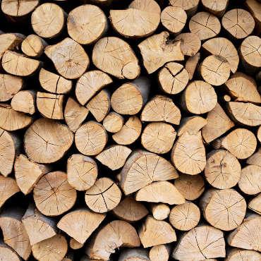 biomass-wood-logs